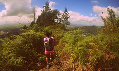MT ST BENEDICT TO MT TABOR (anax44) Tags: travel trees fern nature outdoors hiking hike trinidad tropical mounttabor mtstbenedict