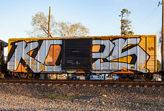 (o texano) Tags: bench graffiti texas houston trains freights wholecar kops benching