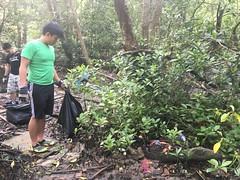2-Env&CivSoc-World-Water-Day-LCK-Cleanup-26Mar16 (Habitatnews) Tags: mangrove capt nus worldwaterday limchukang iccs