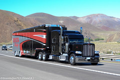 Peterbilt 389 Race Hauler (NV) (Trucks, Buses, & Trains by granitefan713) Tags: peterbilt 18wheeler tractortrailer bigrig 389 newtruck longhaul largecar peterbiltruck trucktractor peterbilt389 racehauler sleepertractor