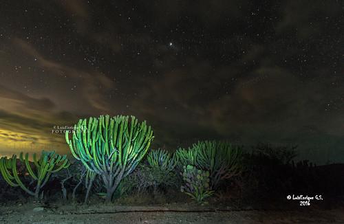 Recorrido a las Estrellas – Reserva de la Biósfera Tehuacán - Cuicatlán - San Juan Raya – Puebla - México