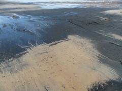 Reverse bat (Nekoglyph) Tags: black beach wet seaside sand yorkshire cleveland saltburn seacoal