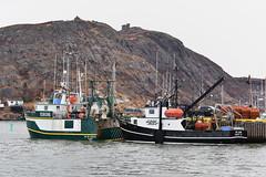 Below The Hill (Zircon_215) Tags: newfoundland stjohns fishingboats signalhill newfoundlandlandscape daltonprincess sireldon