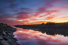 Point Isabel Sunset 04-06-2016 (Ellen Soohoo) Tags: sf park sunset dog canon bay san francisco shoreline richmond east area tamron regional 2016 ebrpd eastbayregionalparkdistrict tamron2875mmf28 pointisabeldogpark ptisabelregionalshoreline 5dmarkii ebparksok