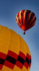 SYDNEY & FRIENDS (judexvalentine) Tags: sea sky water la hotair balloon sydney canberra harbourbridge aloft perouse lapreouse