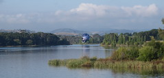 Airforce balloon near Scrivener Dam on the lake (spelio) Tags: water festival mar hotair balloon australia canberra act 2016 lakeburleygriffin