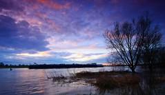 The barge (M a u r i c e) Tags: sky tree water netherlands river flood wideangle explore maas barge limburg efs1022mm grubbenvorst ultrawidezoom