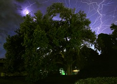 Extreme Roots (KM Preston Photography) Tags: longexposure trees storm weather night clouds landscape cloudy nightshots thunderstorm nightsky nightscene lightning extremeweather sebastianfl stormscape lightningstorm indianrivercounty 8801071113303420160416052052c kmprestonphotographyc