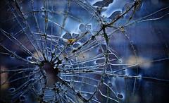 (jtr27) Tags: railroad abandoned broken glass car train entropy decay sony maine newengland sigma dna wabisabi passenger junkyard 60mm alpha f28 ilc patina csc dn nex ilce mirrorless dnart emount nex7 jtr27 sigmaart dsc09423e