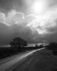 The Path (David de Lange photo's) Tags: road white black tree monochrome landscape path cloads tweede