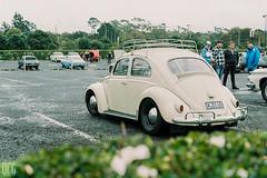 F1000006 (Dorian-G) Tags: new newzealand film 35mm superia olympus zealand 200 om1 om1n shootfilm filmsnotdead