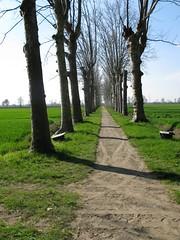 2008 03 Emilia Romagna - Parma - Sant'Agata - Casa Verdi - Il Parco_284 (Kapo Konga) Tags: italia emiliaromagna santagata