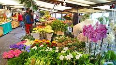 Paris Avril 2016 - 17 le marché de l'Avenue du Président Wilson (paspog) Tags: paris france spring market april markt avril marché printemps frühling 2016 avenueduprésidentwilson