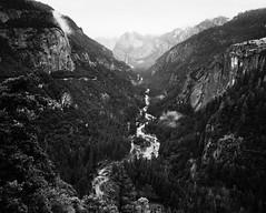 Merced River (michaelmunoz) Tags: california blackandwhite bw mamiya landscape yosemite mercedriver mamiya7