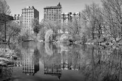 'The Pool' (Joe Josephs: 2,650,890 views - thank you) Tags: nyc newyorkcity travel spring seasons centralpark harlem manhattan photojournalism centralparknewyork springtime urbanlandscapes fineartphotography harlemmeer travelphotography urbanparks outdoorphotography fineartprints harlemnewyork urbannewyorkcity joejosephs joejosephsphotography