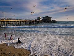 Santa Monica Pier (stedeba) Tags: ocean california usa beach pier losangeles santamonica seagull goldenhour