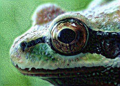 FrogDream (Bugldy99) Tags: photomanipulation manipulated surrealism surreal photomanipulated dreamscope fotomanipulated photosurrealism fotosurrealism