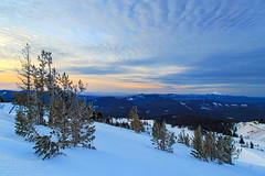 Sunrise over Oregon (Dan Sherman) Tags: morning winter sky mountain snow mountains clouds oregon us unitedstates northwest cascades mthood pacificnorthwest hood pnw mounthood timberline cascademountains wyeast cascadevolcano