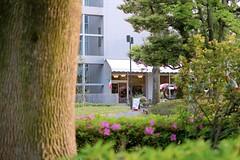 DSCF2244 (keita matsubara) Tags: japan museum  saitama urawa    kitaurawa