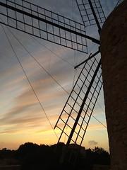 (Ira H.) Tags: windmill spain formentera baleares sanfrancesc