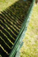shadows (Capturedbyhunter) Tags: auto portugal shadows pentax 55mm santarm fernando marques sombras k5 114 ribatejo coruche rikenon sorraia caador fajarda