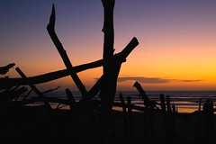 Sunset Otaki Beach (wisnesky1) Tags: ocean sunset sea newzealand colour beach nature water canon landscape seaside sand nz nzbeach
