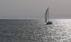 Sailing (orozco-fotos) Tags: espaa spain sailing tokina1224 cdiz orozco sailingship velero rota nikond90 sigma18250 corozco orozcofotos summer2015 verano2015