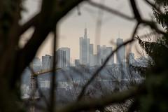 IMG_5273 (Fenn3k) Tags: winter skyline skyscraper deutschland frankfurt distance horizont frankfurtammain wolkenkratzer maintower distanz commerzbanktower