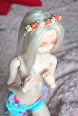 a wig for my little elf (funkysweet) Tags: out mod dream elf dollfie base oob dds
