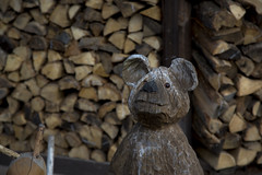Wooden bear (20EURO) Tags: bear winter brown mountain tree cute beautiful forest walking landscape wooden stem natural carving carve photograph lovely firewood beginner whitebirch splitwood tsumagoi darktone canoneos5dmark