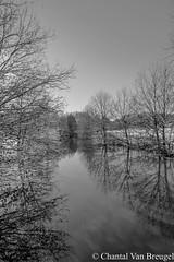 Winter in Nederland (Chantal van Breugel) Tags: winter zwartwit sneeuw groningen landschap sellingen canon50d canon1585