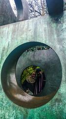 Cornwall_New_Year_2015_2016_2016_01_09_15_51_28 (James Hyndman) Tags: england cornwall unitedkingdom newyear sculpturegarden stives saintives mooseheads barbarahepworth moosehead westcornwall barbarahepworthmuseum barbarahepworthworkshop newyear2016