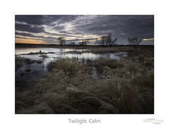 Twilight  Calm (baldwinm16) Tags: winter sunset nature season illinois twilight midwest dusk peaceful calm il marsh february slough tranquil wetland natureofthingsphotography