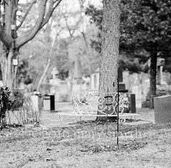 Surrounded, HBM! (marysmyth(NOLA13) ) Tags: winter toronto 6x6 film lamp cemetery metal mediumformat bench square death blackwhite graves hasselblad ilfordxp2super cabbagetown necropolis circular hbm c41 503cxi 150mmcfzeisssonnart