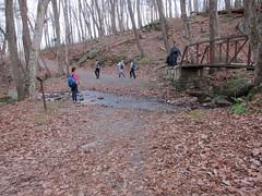 20151127,160919,Canon PowerShot S95 (orndorffr) Tags: mountain virginia hiking climbing va oldragmountain oldrag