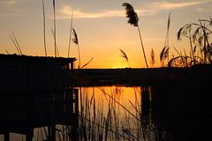 La pace dei sensi ......!!! (lella 92) Tags: sardegna sunset tramonto nuvole sardinia cielo tramonti sassari bellezza platamona sardo stagno sardigna stagni stagnodiplatamona paesaggisardi dafareinsardegna