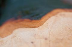 Welle (koDesign) Tags: wood brown tree nikon dof bokeh layer braun minimalism holz baum rinde stamm d300 nikkor50mmf14d schichten minimalismus