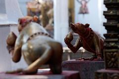 Rats of Ganesh (benoitcops) Tags: nepal pentax ganesh pokhara hindutemple smc55300mmf4 pentaxk5ii