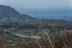 UNA VALLE  A TOLFA  ----   EXPLORE (Ezio Donati) Tags: italy panorama mountain nature forest landscape italia natura montagna grazing lazio valleys bosco valli pascoli pascolo nikond700