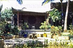 Lau Yee Chai Back Patio 1949 (Kamaaina56) Tags: hawaii restaurant waikiki slide 1940s lauyeechai