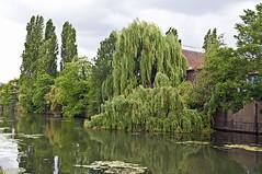 Grand Union Canal (D_Alexander) Tags: uk england london grandunioncanal northwestlondon