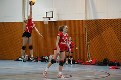 20160306 BSP MTV Stuttgart vs. TV Waldgirmes (WLK_G) Tags: geotagged deutschland volleyball deu badenwrttemberg stuttgartbotnang tvwaldgirmes motivstuttgart geo:lat=4878599321 geo:lon=913143039 bspmtvstuttgart 3bundesligasd