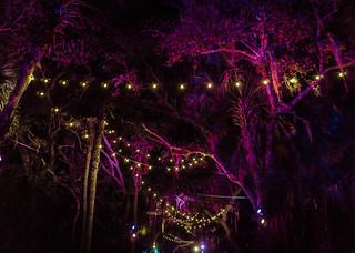 Okeechobee Musis & Arts Festival 2016 Neon Trees at Night