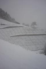 zuhause (inge.sader) Tags: winter snow fog landscape sony landschaft trentino sdtirol altoadige brixen bressanone eisacktal sonyalpha7ii