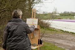 Schilder aan het werk (Paul Rosenhart) Tags: schilder painting nikon schilderij bollenveld d700 paulrosenhart