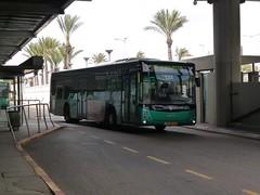 75-981-69 (80747) (Elad283) Tags: israel haifa ישראל חיפה busstation scania egged haargaz eggedbus hofhacarmel n320ub israelbus haifabus