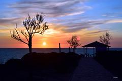 El mirador (ZAP.M) Tags: naturaleza azul contraluz atardecer andaluca nikon flickr playa nubes cdiz mirador chiclana barrosa novosanctipetri zapm nikon5300