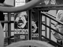 (Thauana Faria) Tags: city blue cidade brazil urban tree church window arquitetura brasil concrete day perspective dia sampa igreja janela urbano perspectiva paulo sant rvore so santo archtecture prdios concreto buldiing