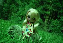 Bunny & bunny (gomides1) Tags: bunny blythe boneca coelho