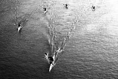 the winner (Francesco Chiapperini) Tags: sunset blackandwhite italy river torino kayak italia tramonto fiume nikond50 winner po turin canoa vincitore